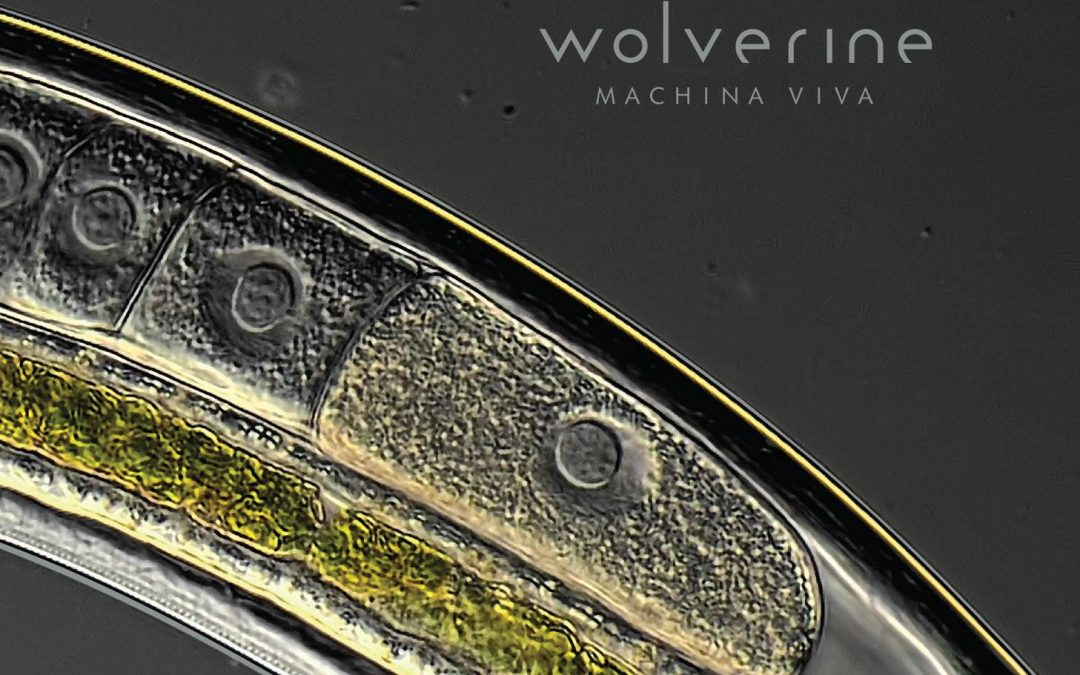 Wolverine – Machina Viva