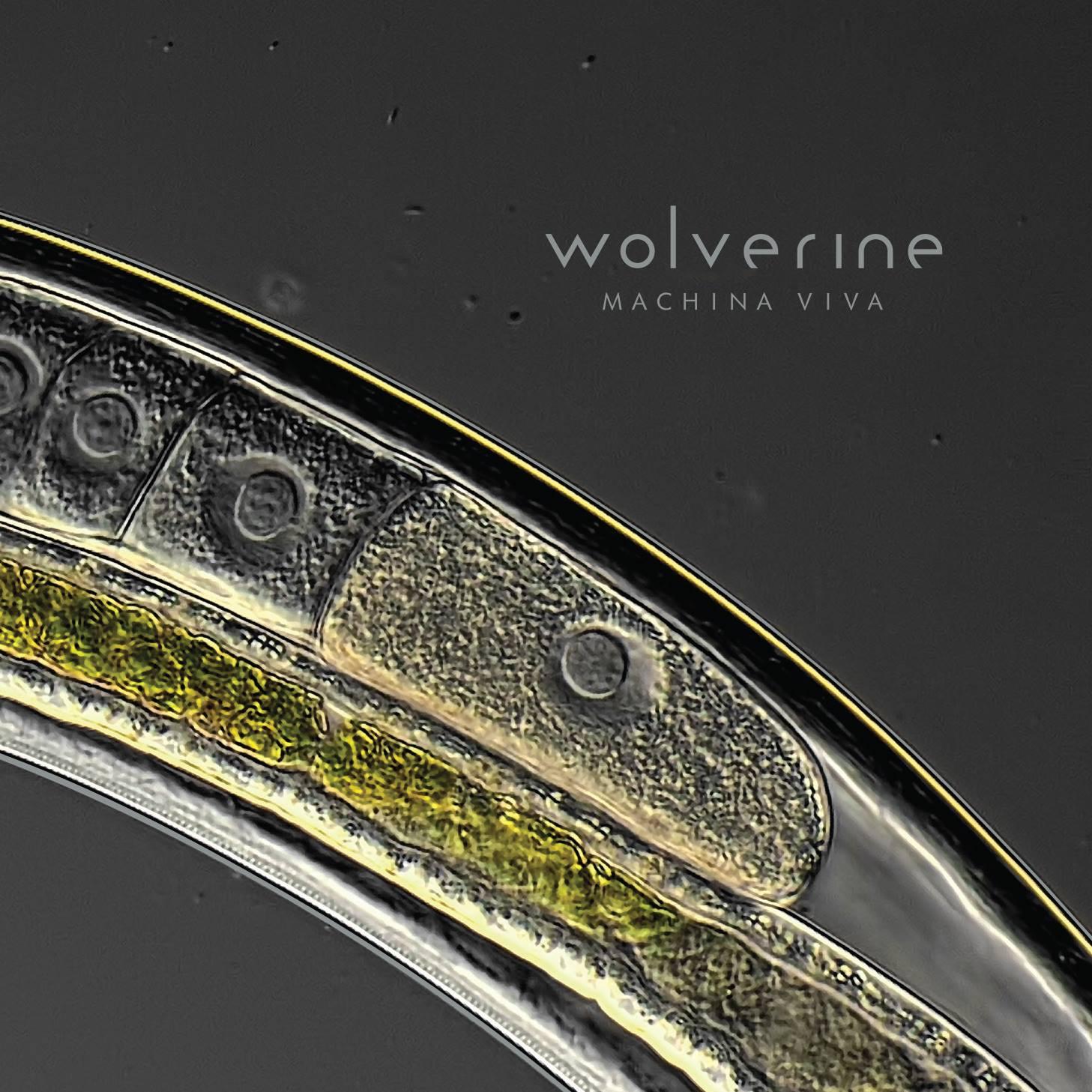 Wolverine – Machina Viva