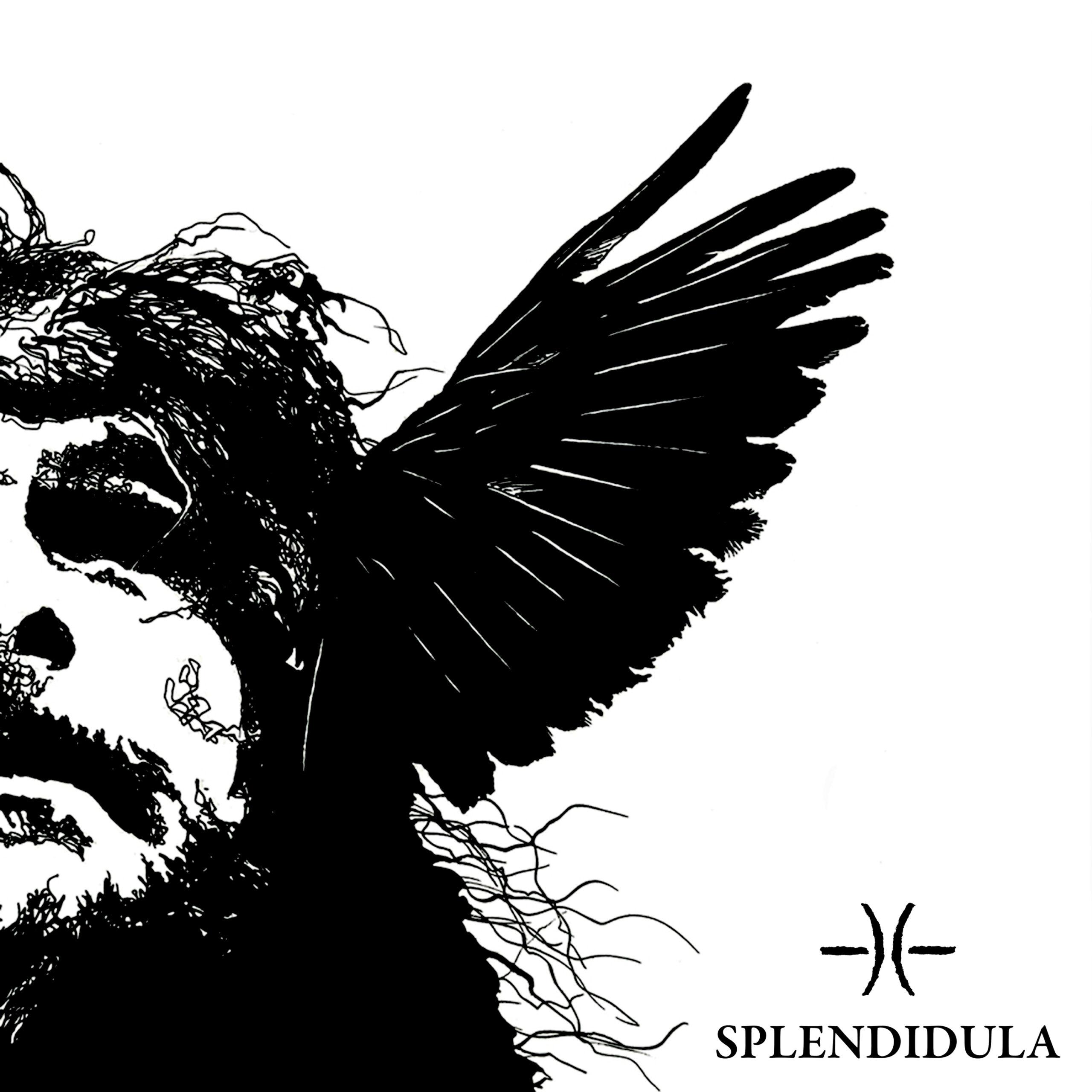 Splendidula – Somnus
